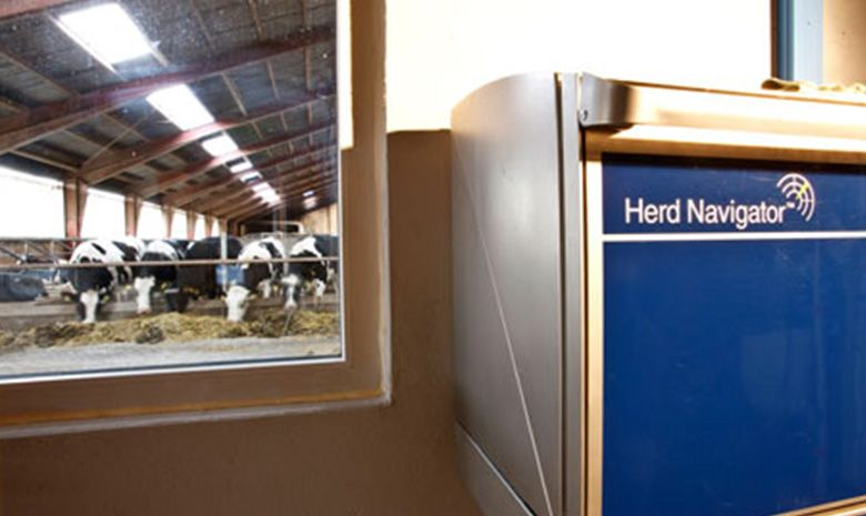 herd navigator interna