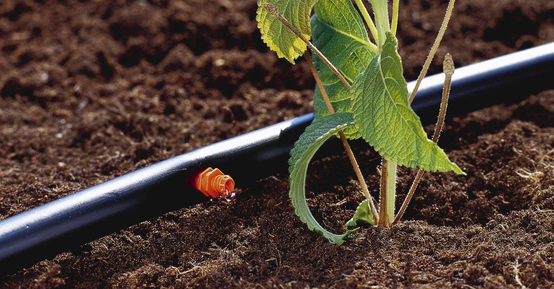 Metodologie di irrigazione zoomac macchine agricole for Irrigazione per aspersione
