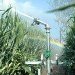 irrigazione-agricola