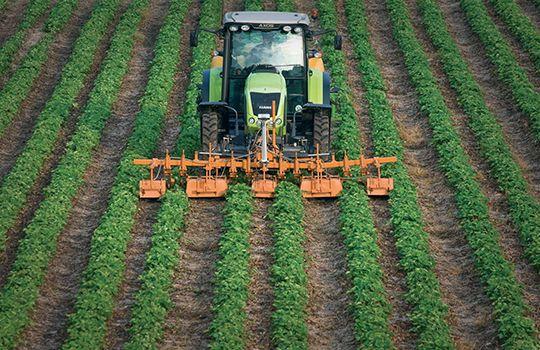 Macchina agricola per la lavorazione del terreno